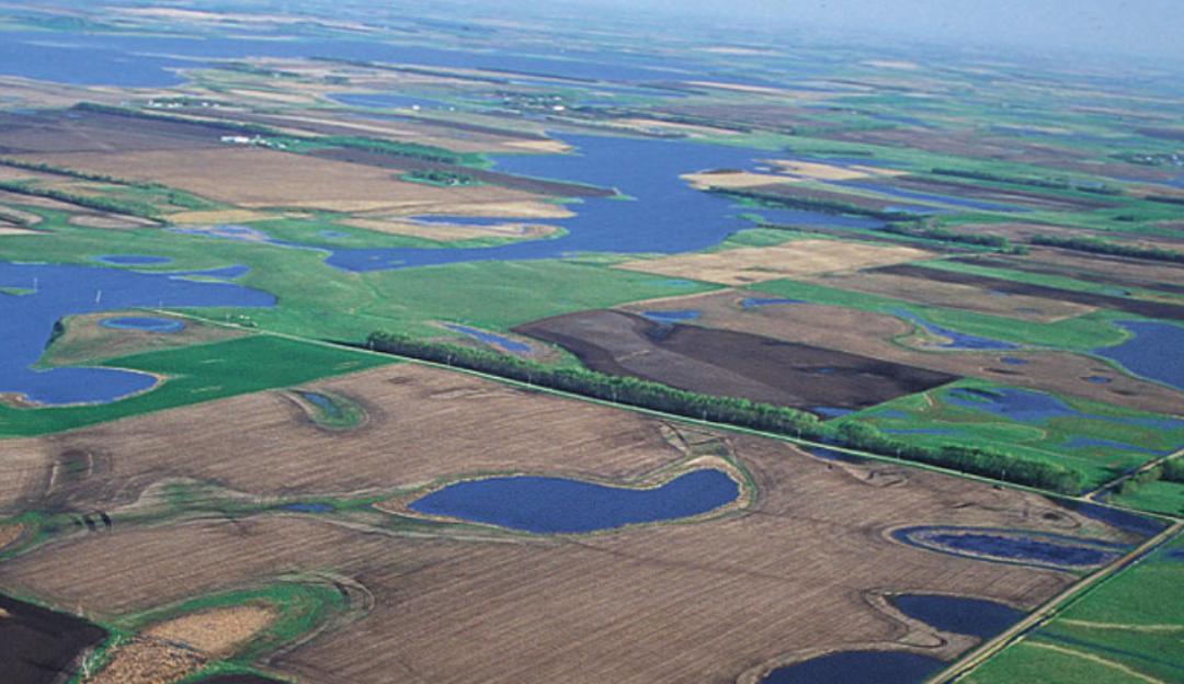 WOTUS Redefinition: South Dakota
