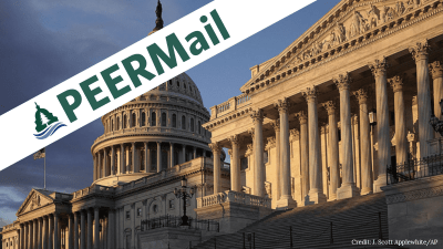 PEERMail: The Demise of Advise and Consent