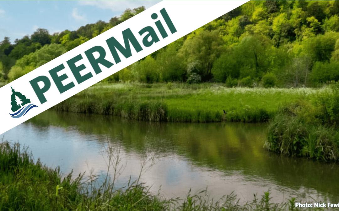 PEERMail: The Worst One Yet