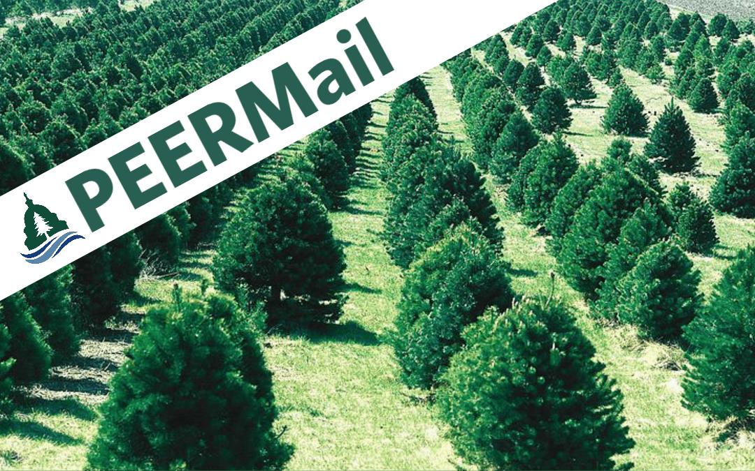 PEERMail: Trump's Tree Huggers