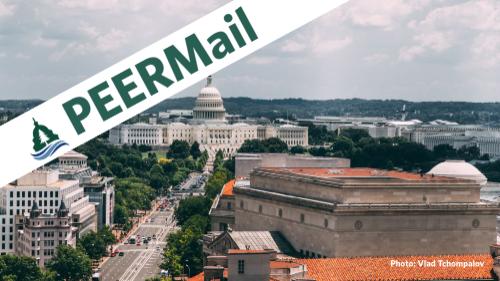 PEERMail | Rocky Road Ahead