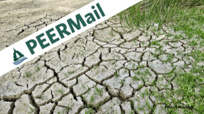 PEERMail | Climate Change and the Transition Ahead