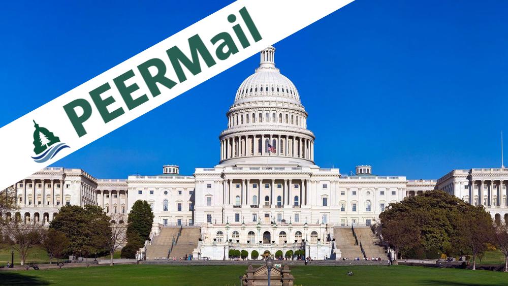 PEERMail: Looking Ahead on MLK Day