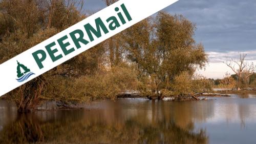 PEERMail | Cautious Optimism for Biden's Climate Direction