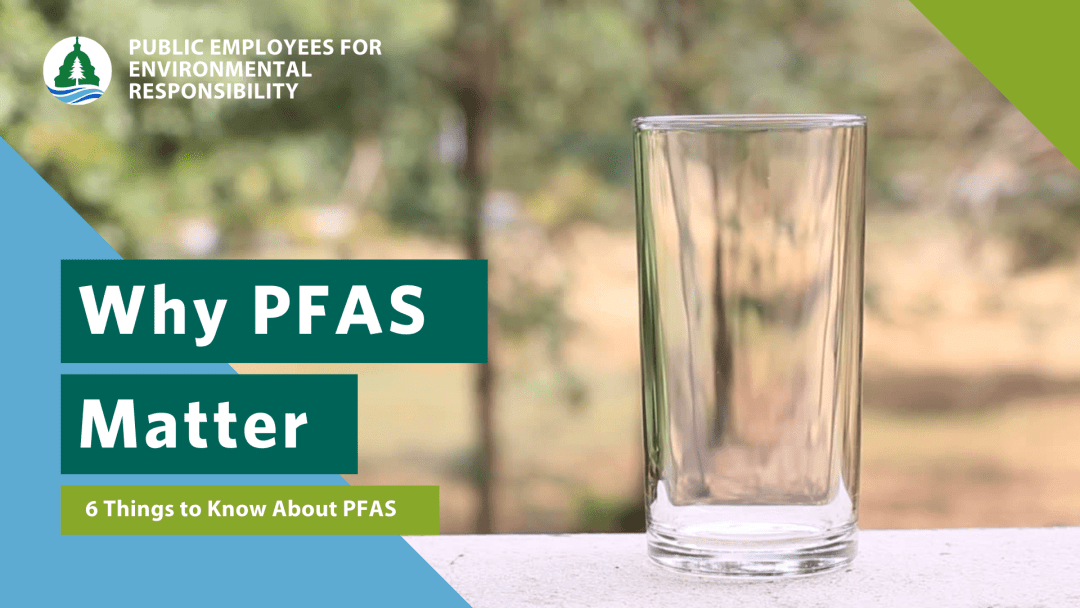 6 Things You Should Know About PFAS