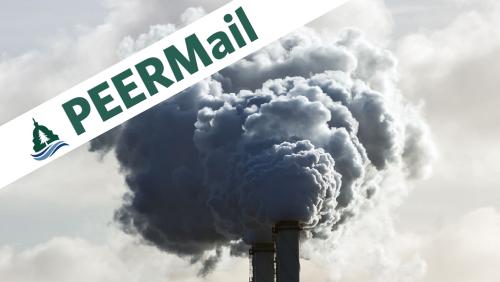 PEERMail | Toxic Corruption at EPA