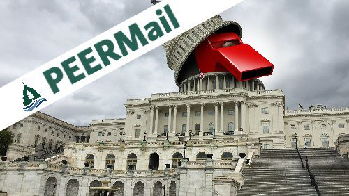 PEERMail | Whistleblowers Making a Difference